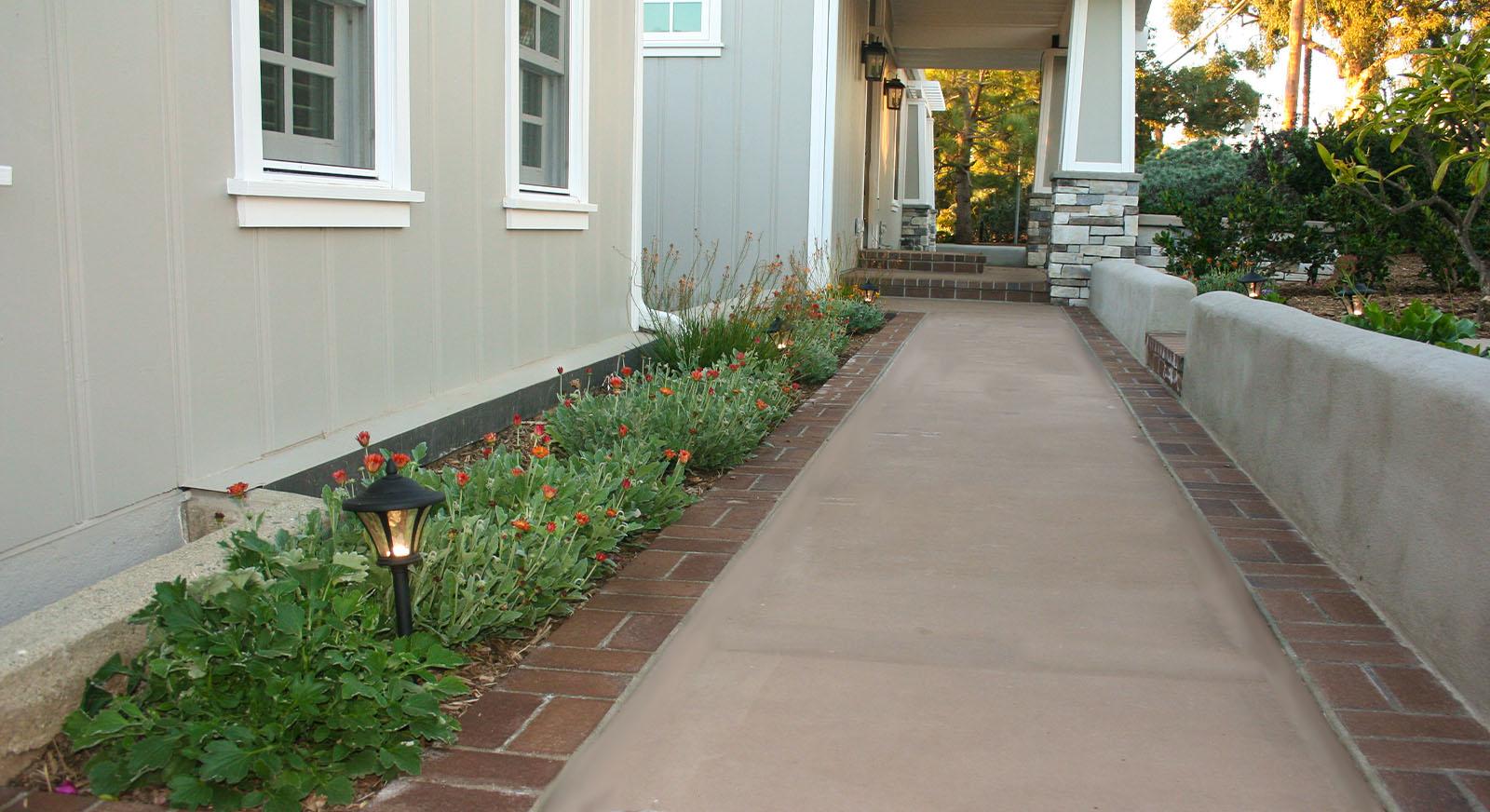 Cross Construction Walk Way, Flower, Plants